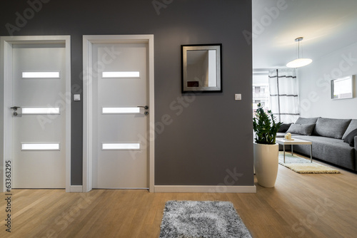 Fototapeta Corridor and living room  in modern apartment obraz