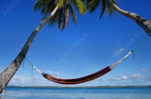Fotografie, Obraz  Colorful hammock between palm trees, Ofu island, Vavau group, To