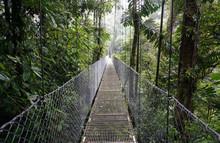 Suspended Bridge At La Fortuna