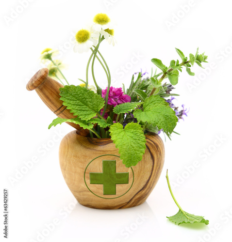 Foto op Canvas Apotheek Wooden mortar with pharmacy cross and fresh herbs