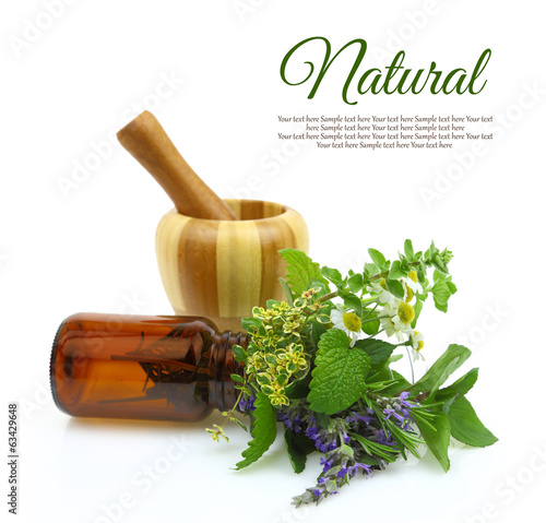 Mortar and pestle with fresh herbs and medical bottle Canvas Print