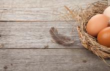 Eggs Nest On Wooden Table