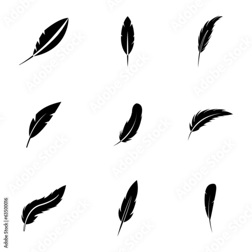 Vector black feather icons set Canvas Print