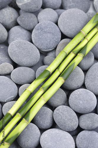 cienki-bambusowy-gaj-na-kamykach-zen