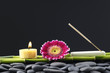 Zen Stones and bamboo grove with candle and daisy