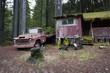 verlassene Hølzhütte mit Lastwagen im Wald