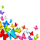 Color butterflies background with place for Your text