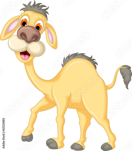 kreskowka-wielblada