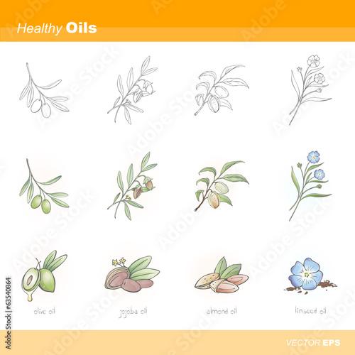 Fotografie, Obraz  Healthy oils