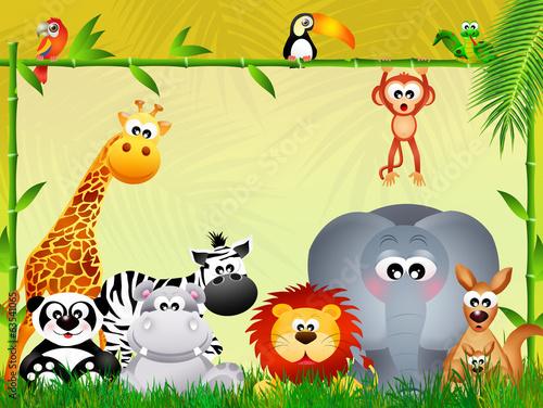 dzikie-zwierzeta-kreskowka