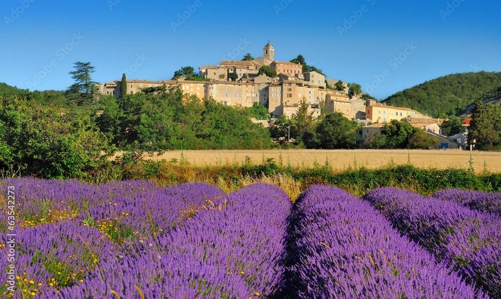 Fototapety, obrazy: la lavande en provence