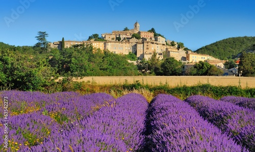 Photo Stands Lavender la lavande en provence