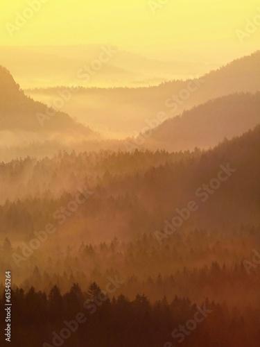 Tuinposter Bergen Autumn orange cold and misty daybreak in a beautiful park.
