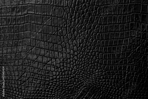 Poster Crocodile Black Leather background and texture