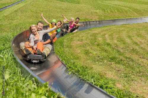 Fotografie, Obraz  Happy Couples Enjoying Summer Sledge