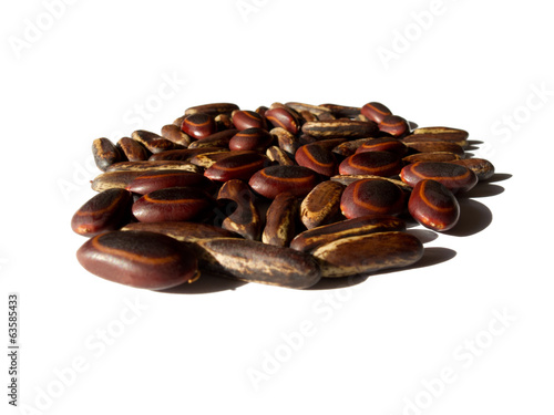 fistfull of beautiful tropical seeds - Buy this stock photo and