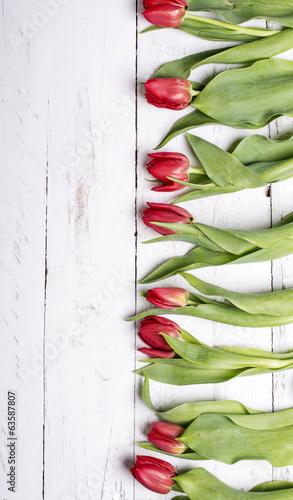 tulipany-na-bialych-drewnianych-deskach-eves