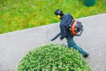 Gardener Using A Gas Blower In...