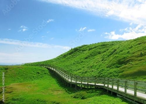 fototapeta na drzwi i meble Drewniany chodnik chodzić zielonym wzgórzu