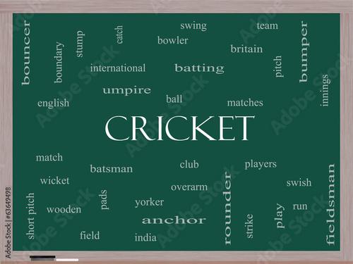 Fotografie, Obraz  Cricket Word Cloud Concept on a Blackboard