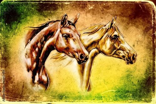 rysunek-odreczny-glowa-konia