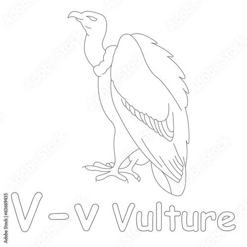 V for Vulture Coloring Page – kaufen Sie diese Illustration ...