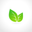 Green leaf ecology emblem