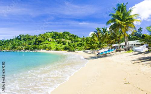 Foto op Plexiglas Caraïben Parlatuvier Bay, Tobago