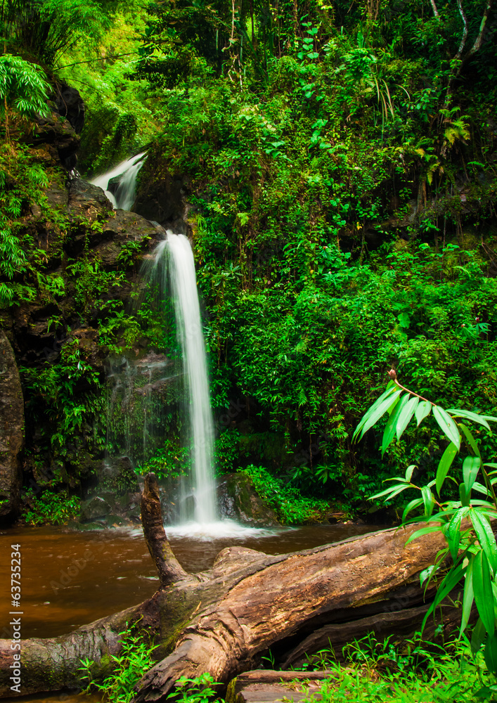Fototapeta Doi Suphet national park waterfall, Chang Mai,Thailand