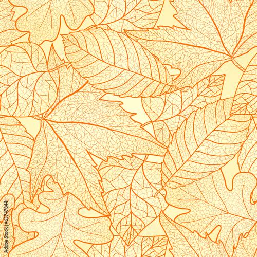 zolto-pomaranczowe-liscie