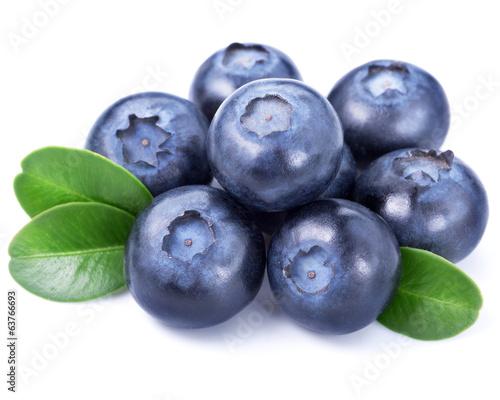 Fotografía  Blueberries