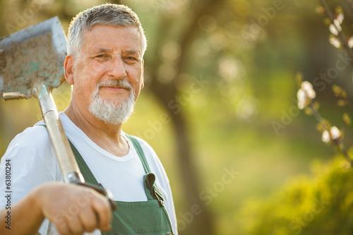Portrait of a handsome senior man gardening in his garden Fototapeta