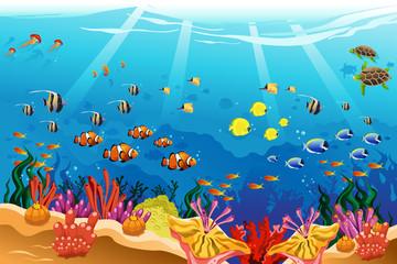 Fototapeta na wymiar Marine underwater scene