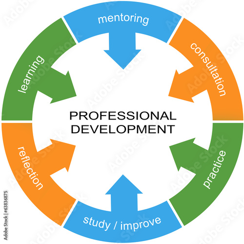 Fotografie, Obraz  Professional Development Word Circle Concept