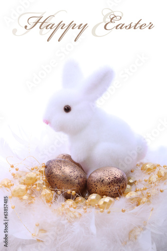 Fotografie, Obraz  Easter bunny