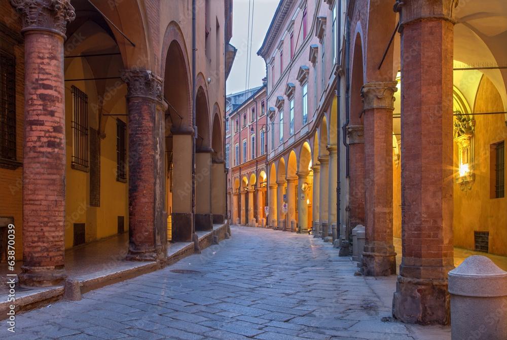 Fotografie, Obraz Bologna -  Via Santo Stefano (St. Stephen) street