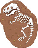 Fototapeta Dinusie - Cartoon Tyrannosaurus rex fossil