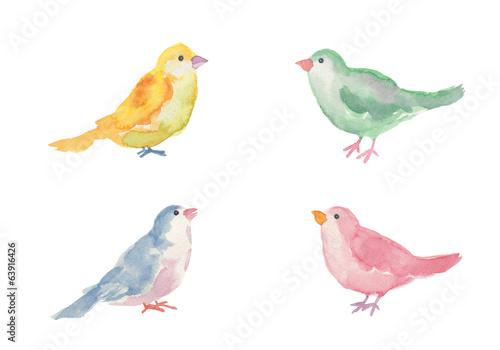 小鳥の水彩イラスト