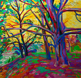 original oil painting, forest in spring.  Modern Impressionism