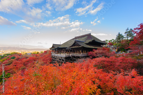 Poster Kyoto Kiyomizu-dera stage with fall colored leaves