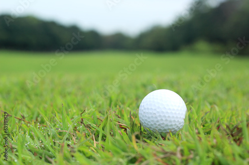 Deurstickers Golf Golf ball lying in the fairway