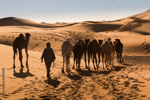 Spoed Foto op Canvas Marokko Sahara desert sand dunes morocco nomad Berber camel