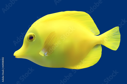 Fotografie, Tablou  Yellow tropical fish. Vector illustration