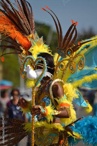 Foto op Plexiglas Caraïben Plumes