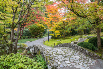 Fototapeta Fall Foliage Stone Bridge Japanese Garden