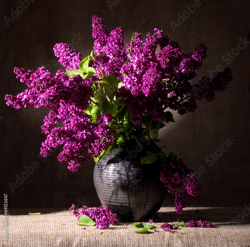 Blooming branches of lilac in vase