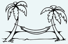 Romantic Hammock Between Palm Trees
