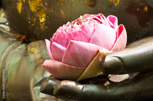 Fotografia the pink lotus in hand of buddha