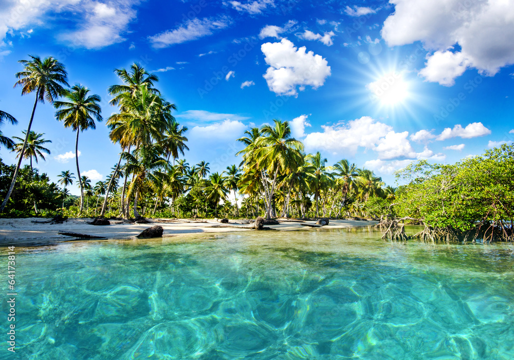 Fototapeta Lonely Caribbean beach   :)