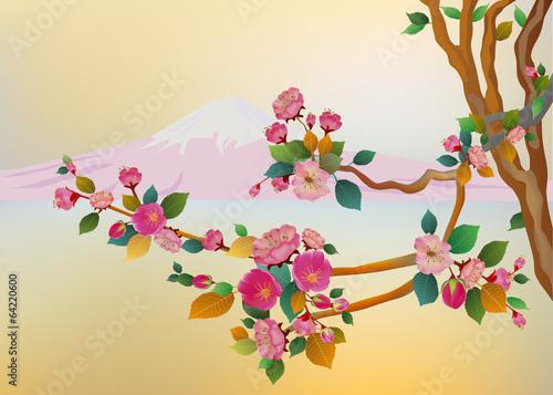 Banner sakura , spring , fuji mountain